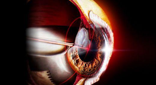 Зрительное восприятие — от физиологии к образу