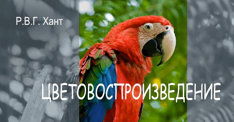 Р. В. Г. Хант, Цветовоспроизведение