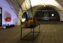 """На выставке """"Радикальная текучесть"""" в МИСП (декабрь 2018)"""
