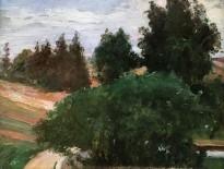 Лион Бакст - Пейзаж, 1904 (картон, масло)